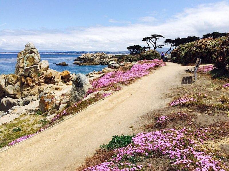 Walking trail along Ocean, one block from Mermaid Cottage