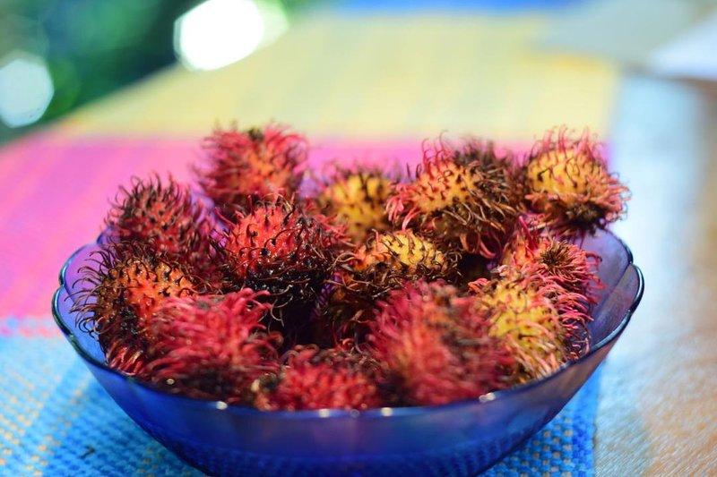 fruta local - mamonchino