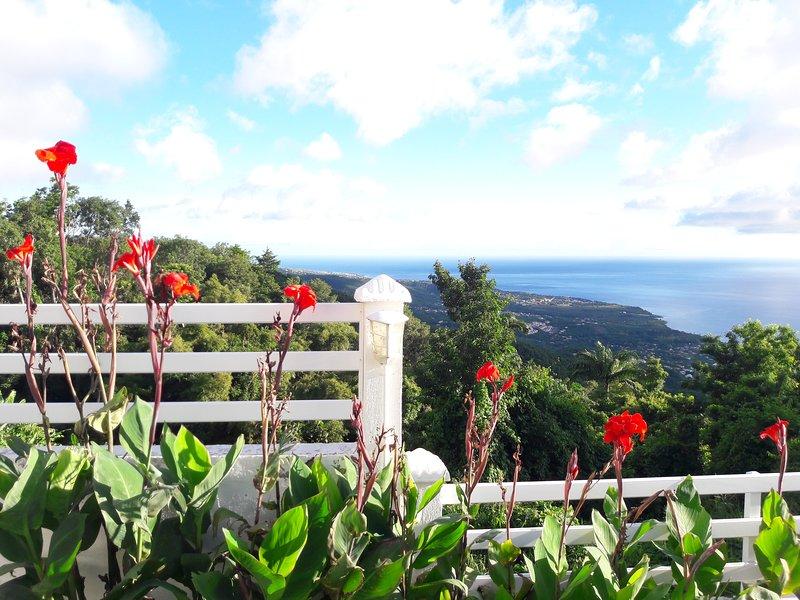 Une partie de la vue mer depuis le jardin