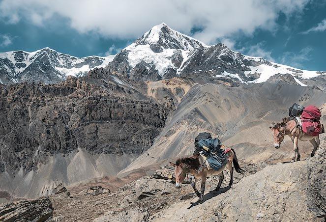 Everest Base Camp Trek, holiday rental in Bhatbhateni