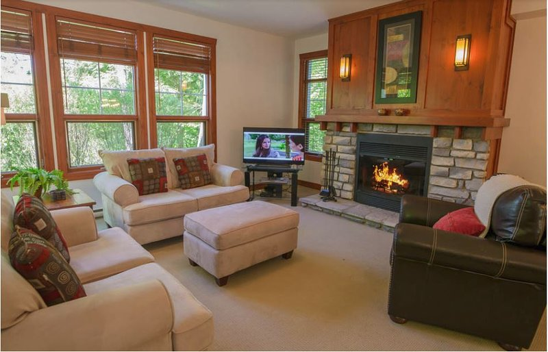 The Cozy Living Area Offering you a Stone Fireplace