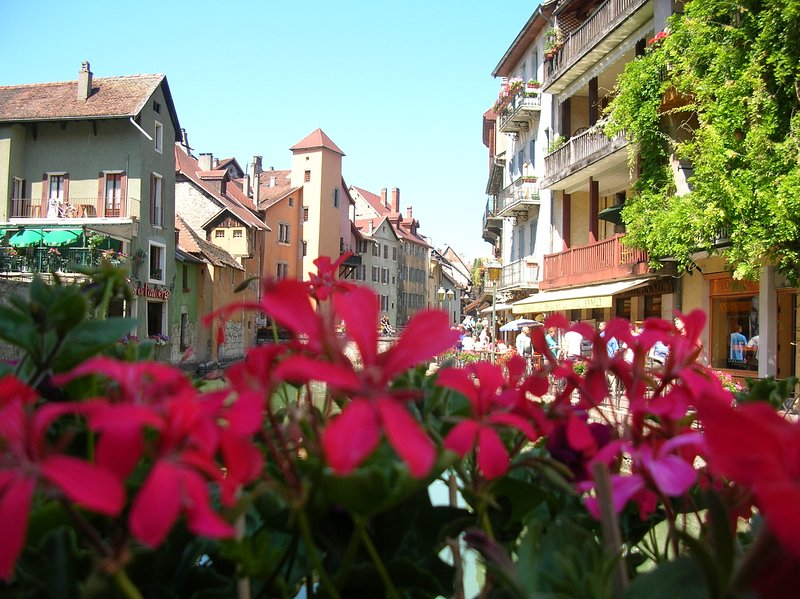 APPARTEMENT DOMINANT LE LAC D'ANNECY, holiday rental in Talloires