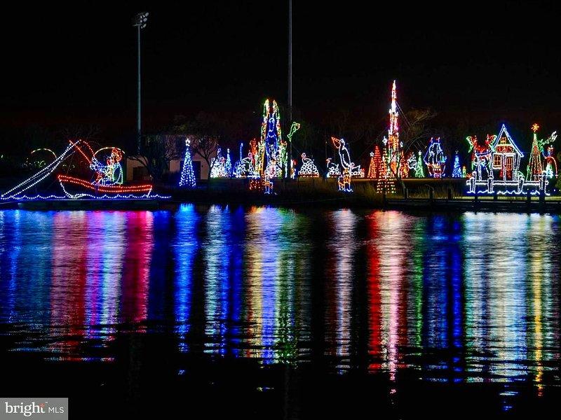 Camine por la calle hasta Northside Park para la Fiesta de Invierno de Luces a mediados de noviembre hasta el día de Año Nuevo