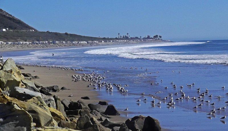 Nuestros recuerdos del océano persistirán, mucho después de que nuestras huellas en la arena hayan desaparecido.