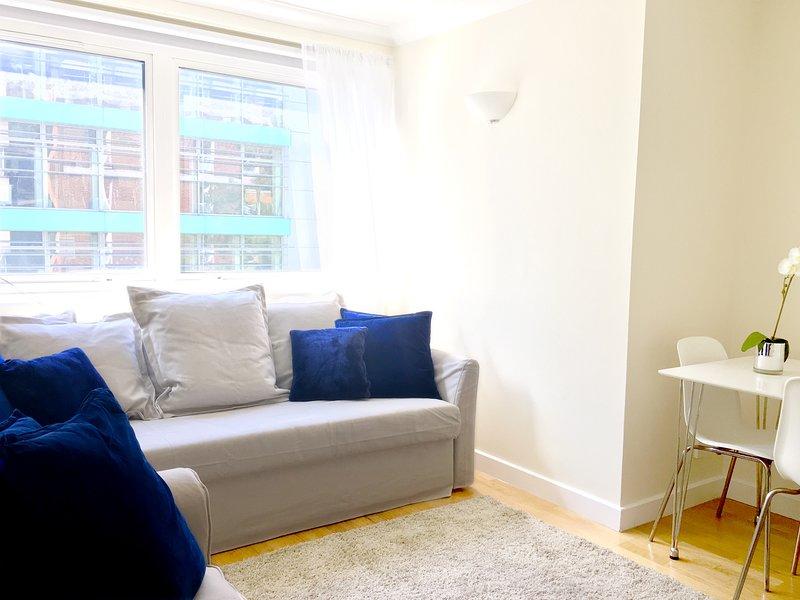 Due divani (uno è un grande divano letto), tavolo da pranzo e 5 sedie, tende oscuranti, TV, Netflix, wifi