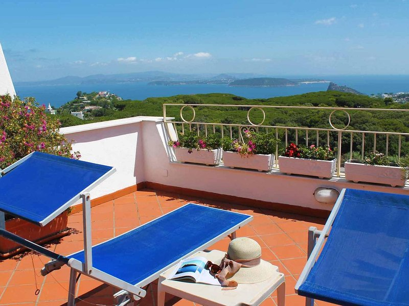 Appartamento a Barano D'ischia ID 540, holiday rental in Cretaio