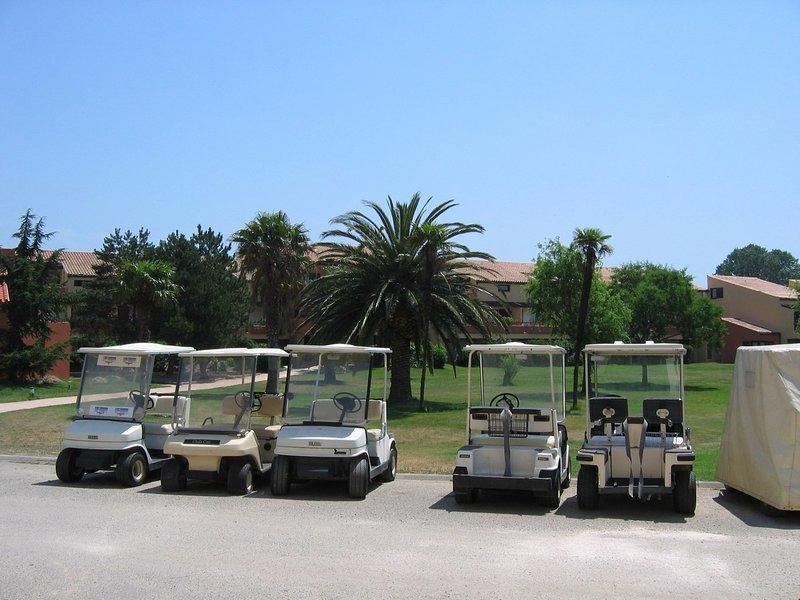 Participez au golf à proximité.