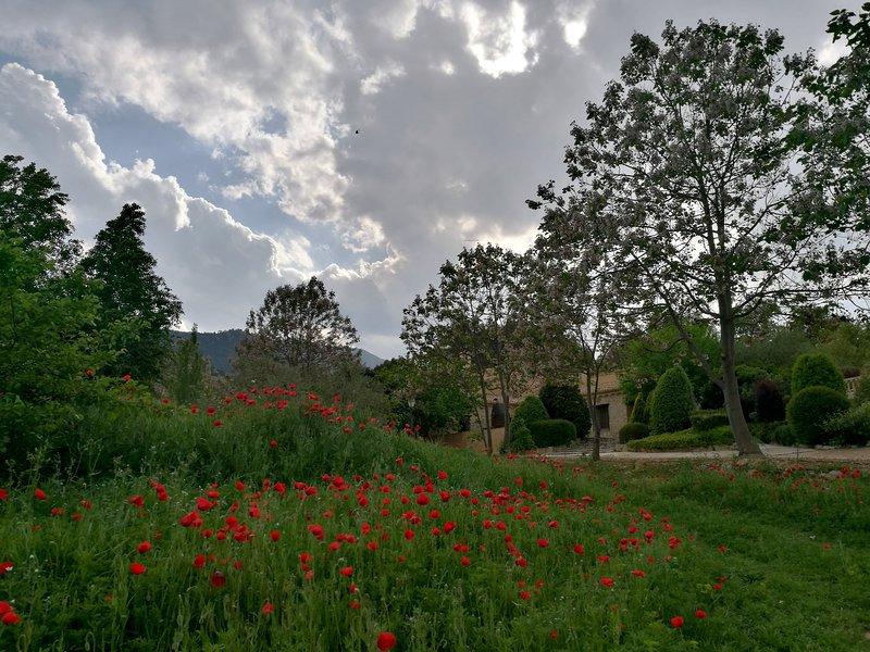 FINCA LA CELADA, Casa de los Pollos, alquiler vacacional en Bullas