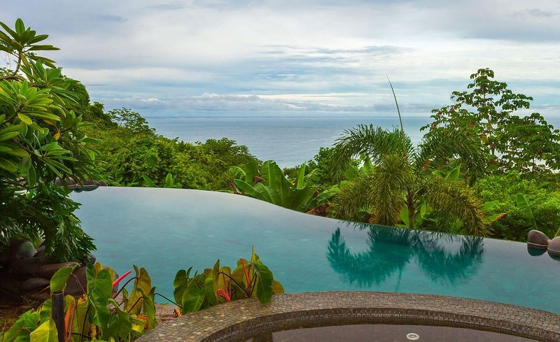 Get some sun in the infinity pool of our gorgeous villa in the jungle!