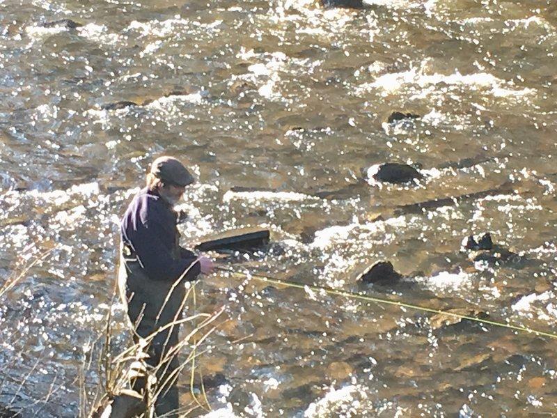 Kevock Vale Park Fishing