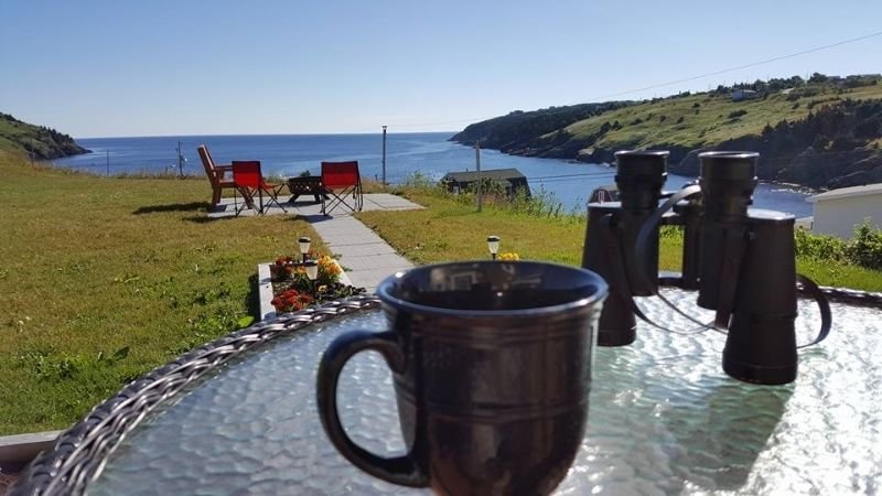 Historic Seaside Cottage (10 mins from St. John's), vacation rental in Newfoundland and Labrador