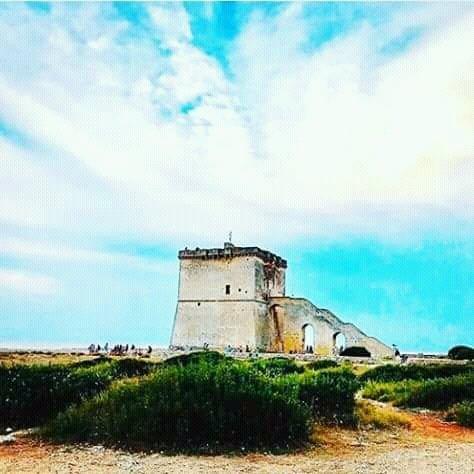 LAPILLO TOWER ... PORTOCESARIO