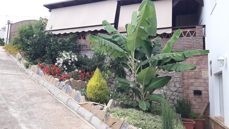 Big house with garden & terrace, vacation rental in Moclinejo