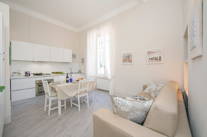 Bright Living room and kitchen with sofa bed