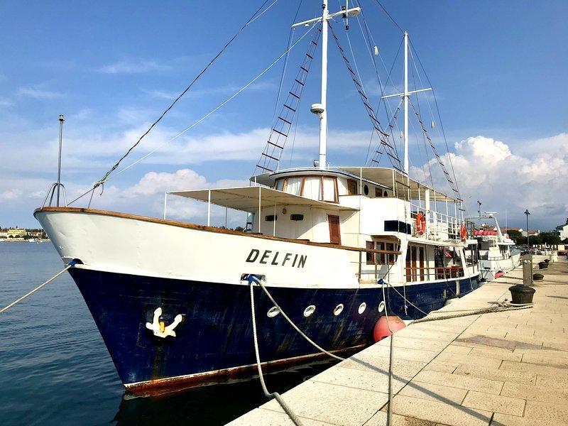 Barca delfino
