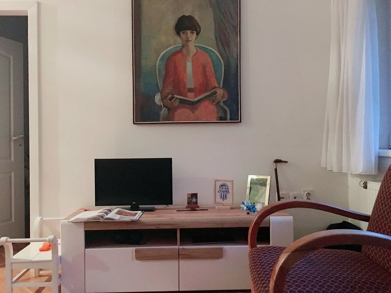 Subotica Appartment, holiday rental in Subotica