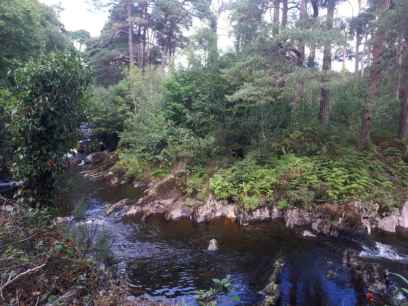 River Retreat Apartment Kenmare, holiday rental in Templenoe