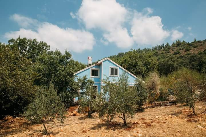 Blue house in the woods, vacation rental in Mi'ilya