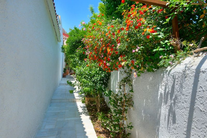 Pathway to the residence