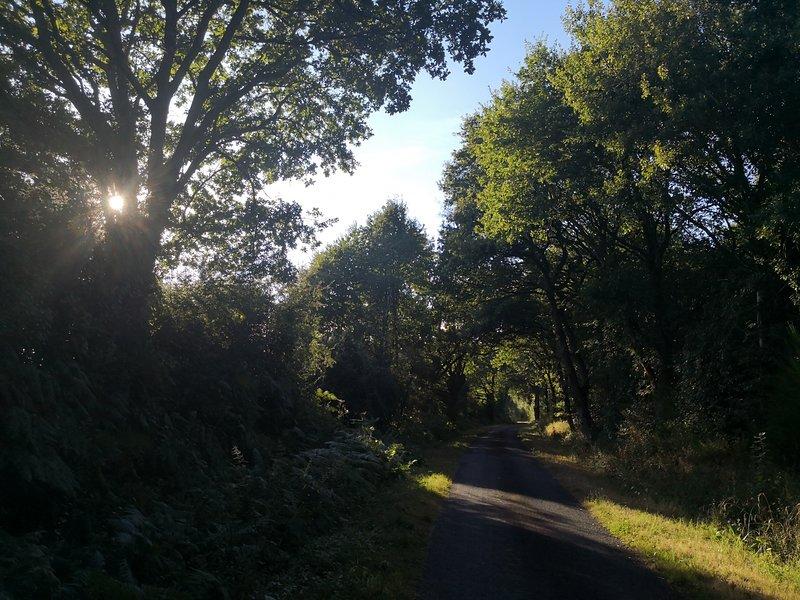 El callejón cerca de Shakespeare Lodge, perfecto para correr o caminar temprano por la mañana.