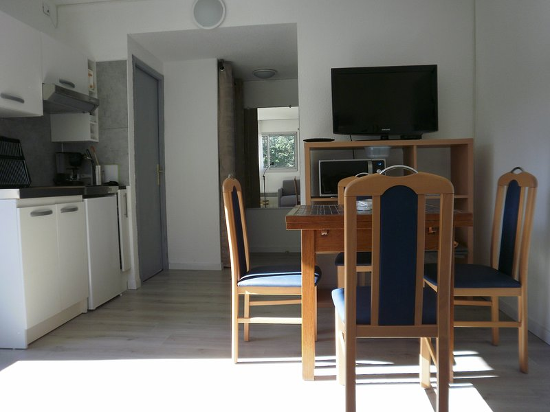 Beautiful studio with mountain view, vacation rental in Villefranche-de-Conflent