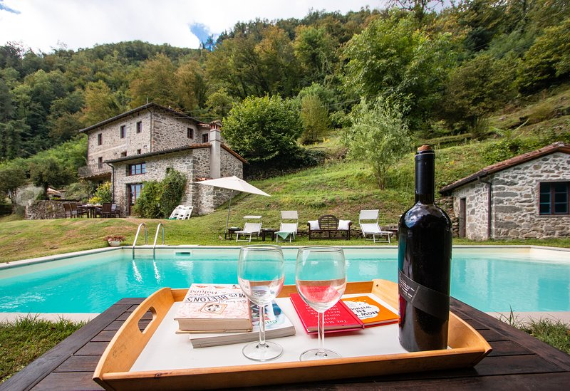 Mulino del Pita with private pool, vacation rental in Barga