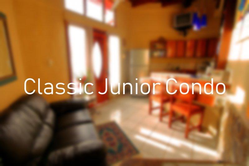 Las Cascadas The Falls - Junior One Bedroom Condo, vacation rental in Quepos