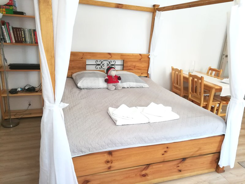 Apartament 'Pijarska', holiday rental in Borowna