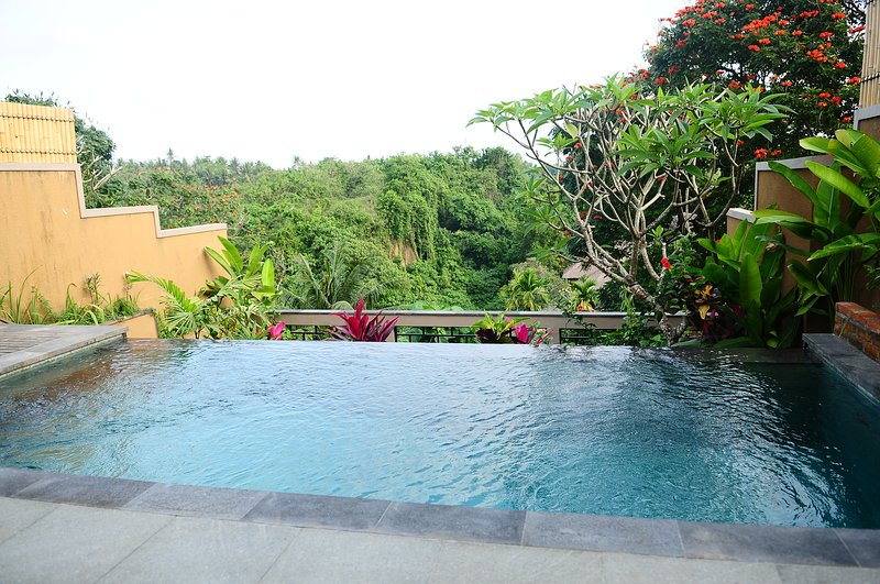 Luxury One Bedroom Villa with Pool, spacious Living Room, and Kitchen at Batuan, holiday rental in Sukawati