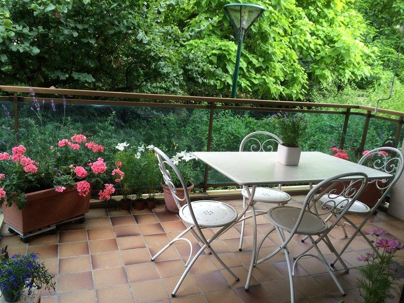 Geneva lac Appartement bien situé en centre ville.Promotion10% 20.06-11.09.2020, holiday rental in Evian-les-Bains