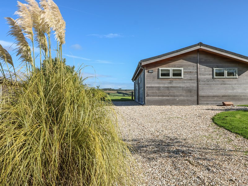 3 Horizon View, Dobwalls, holiday rental in Doublebois