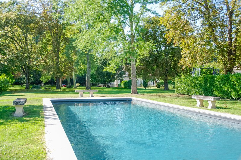 Lagorce Chateau Sleeps 20 with Pool - 5410004, holiday rental in Montguyon