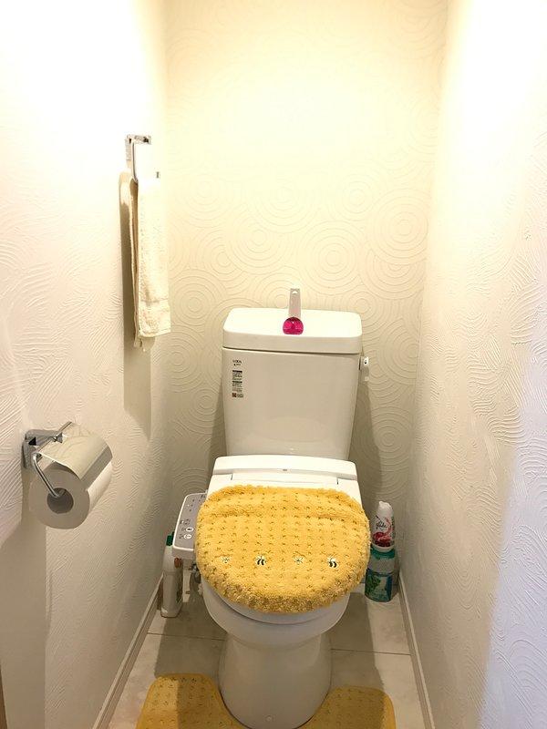 Washlet toilet