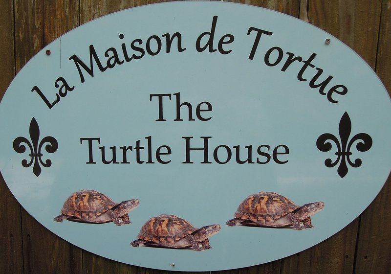 The Turtle House, holiday rental in Gautier