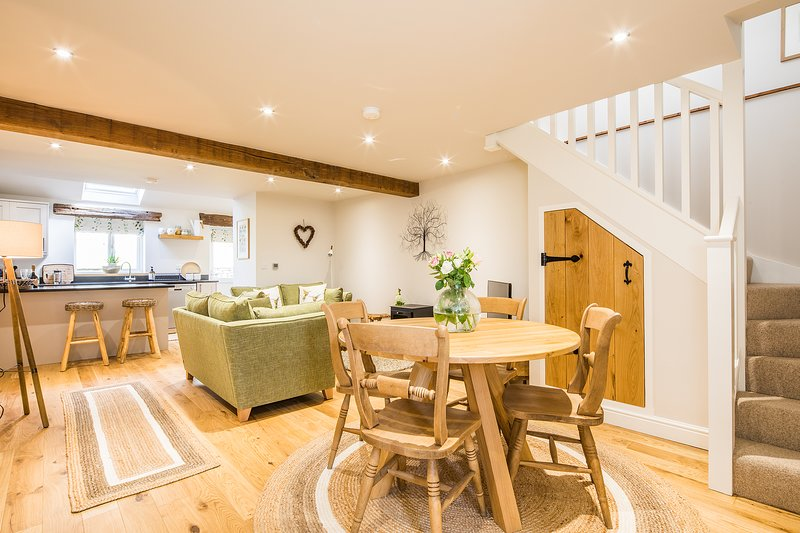Luxury open plan living space