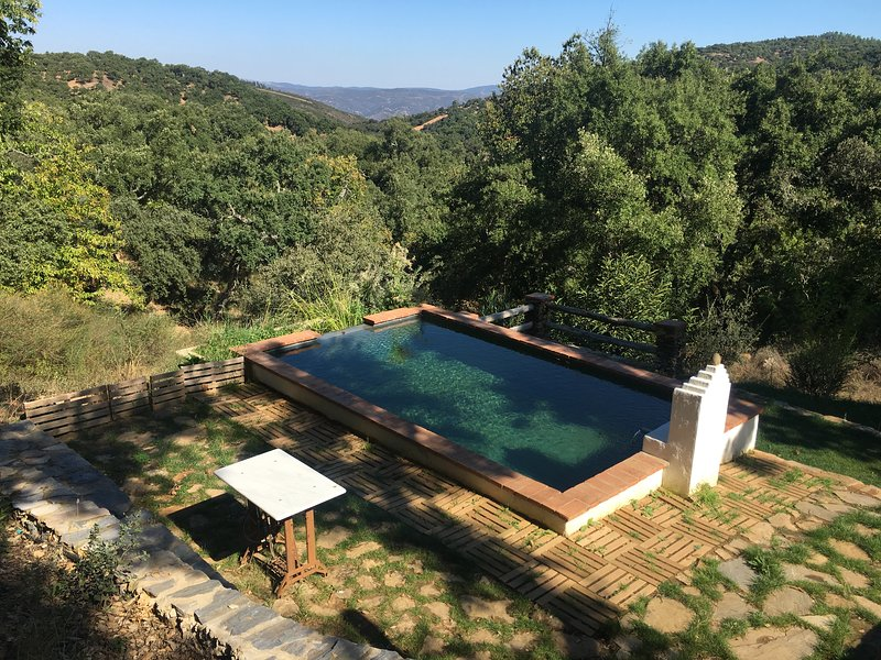 Spacious house with swimming-pool – semesterbostad i Sierra de Aracena and Picos de Aroche Natural Park