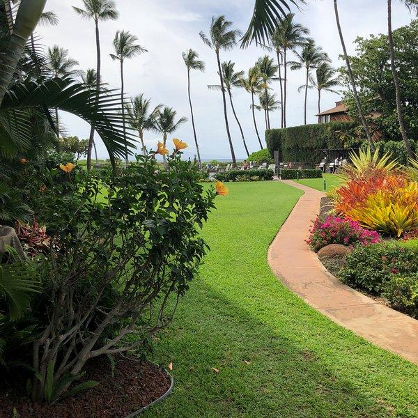 Waiohuli Beach Hale D116 - Aloha Wai, Beachfront, 1Bed/1Bath, Wifi, AC, Pool, vacation rental in Maui
