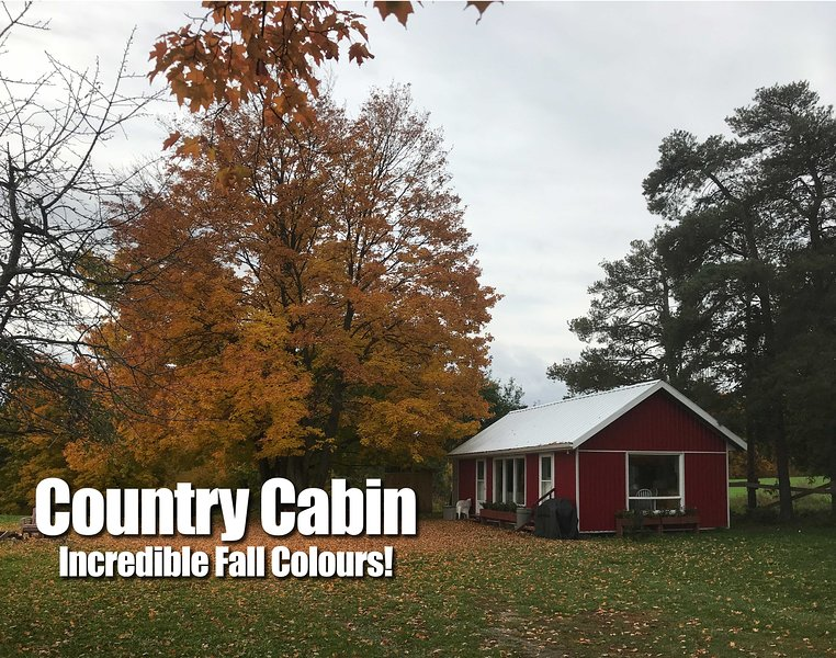 Country Cabin for Stays - WE ACCEPT BOOKINGS - Near Newmarket Toronto, aluguéis de temporada em Newmarket