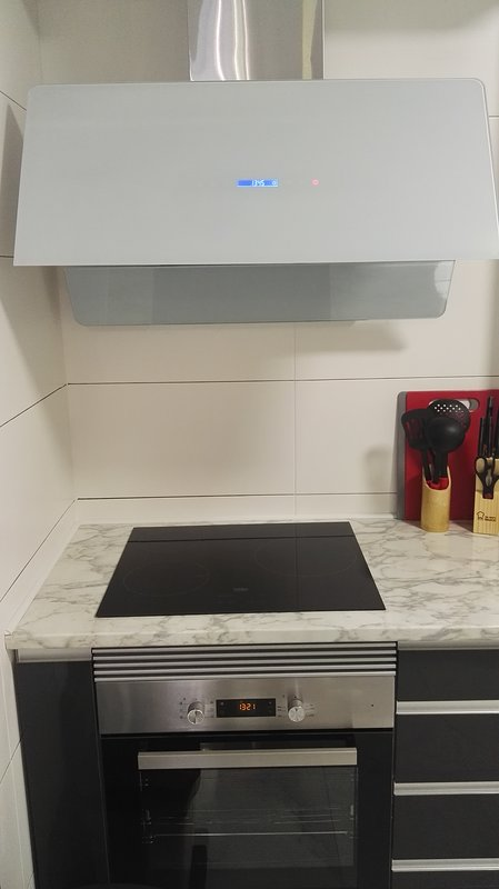 Hood and induction plate plus oven