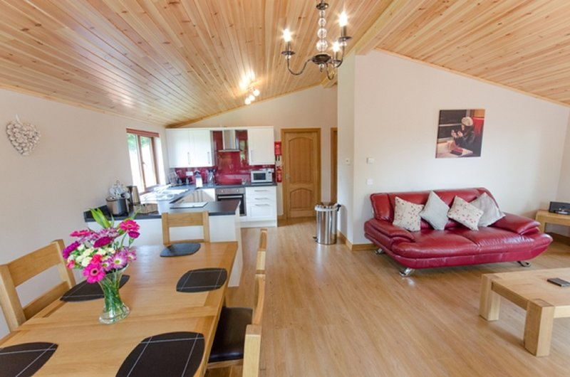Laurel Lodge with Hot Tub, Newton Stewart, vacation rental in Newton Stewart