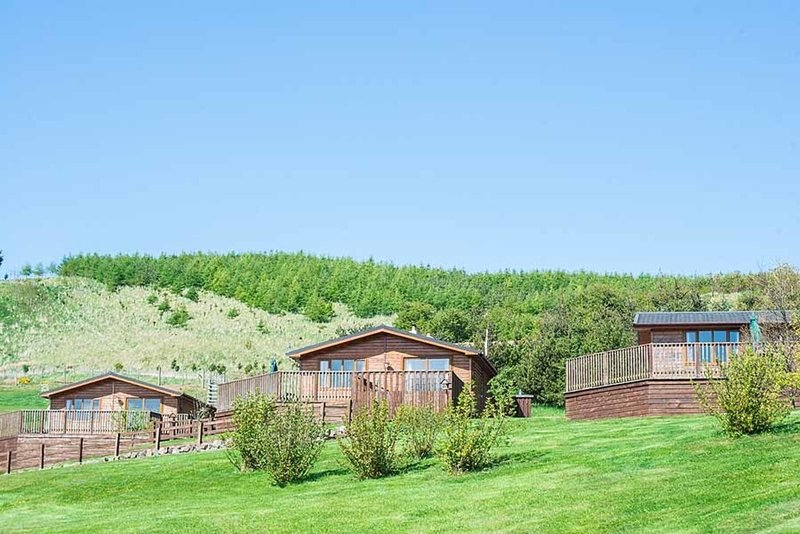 Kingfisher Lodge with Hot Tub near Cupar, Fife, holiday rental in Ladybank