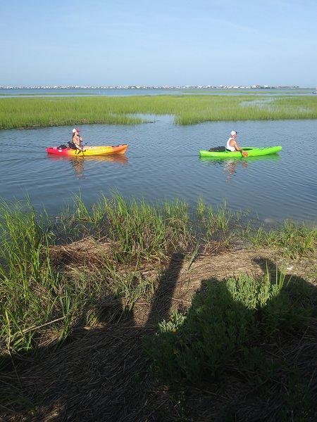 Kayaks dans notre cour.