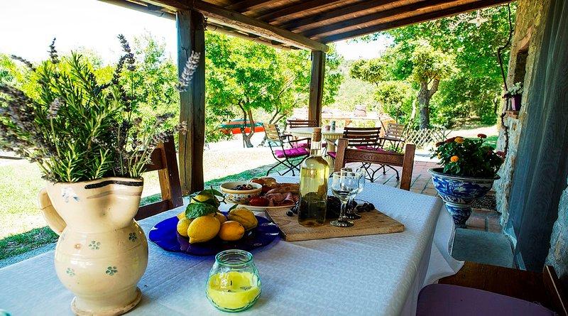 VILLA PRINCIPE WITH POOL 6 SLEEPS, holiday rental in Vitiano