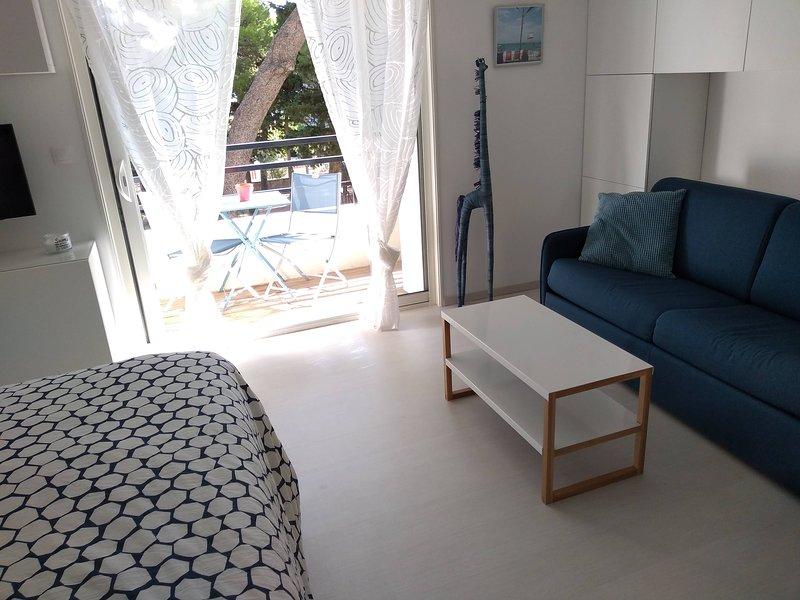 Joli studio en 2ème ligne, location de vacances à La Franqui