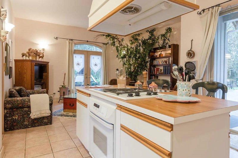 Gourmet kitchen/living room