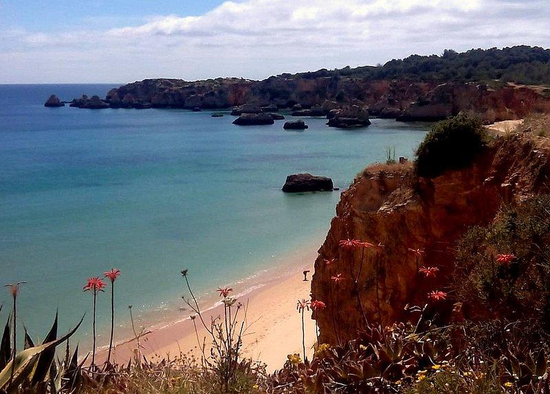 Playa del Vau 5 minute walk
