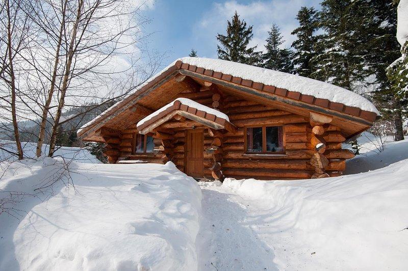 4. Magnifique chalet rondins 4/6 p, 52 m², 2 ch G, vacation rental in Wildenstein