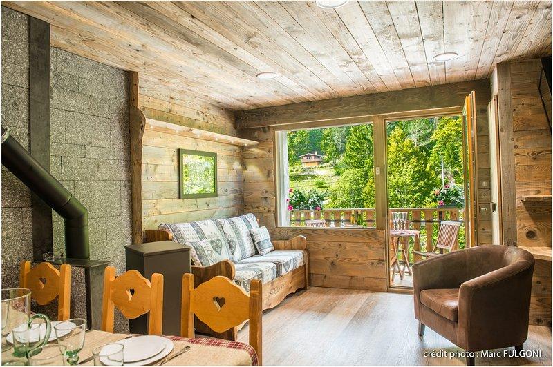 G5. Appartement premium 3/5p 42m² 1ch terrasse, location de vacances à Wildenstein