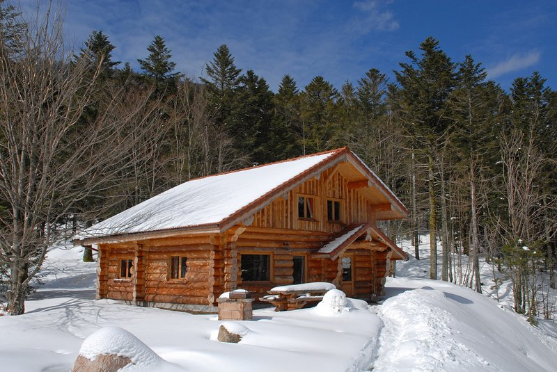914. Superbe chalet rondin 12/14p 150m² 4ch sauna, vacation rental in La Bresse