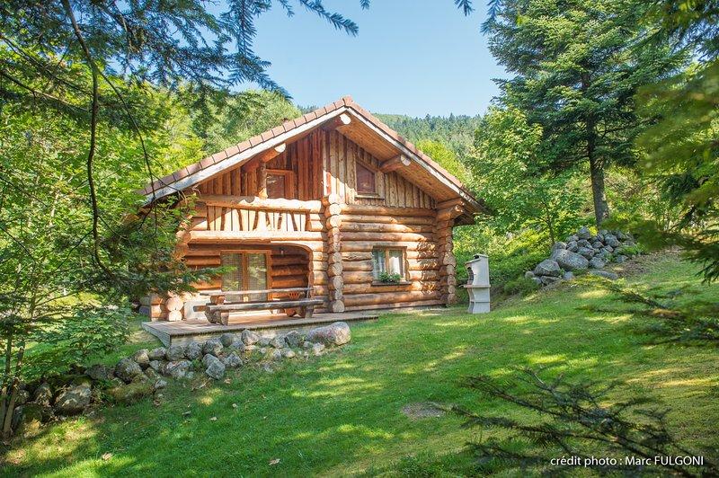 8. BA  Magnifique chalet rondins 130m², 4ch, 8/10p, holiday rental in Wildenstein